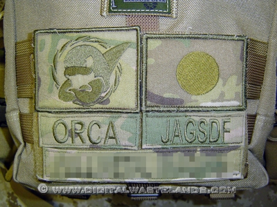 http://www.digitalwastelands.com/bbimages/airsoft/multicam/multicam05a.jpg